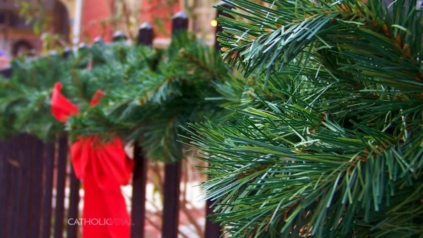 27 Christmas Season Celebration Photographs - HD Christmas Wallpapers - Christmas Fir