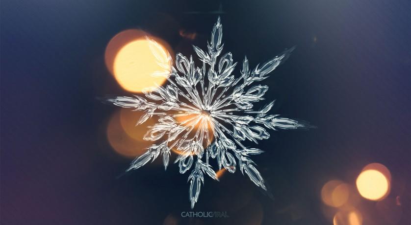 27 Christmas Season Celebration Photographs - HD Christmas Wallpapers - Ice Crystal